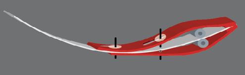 Add-Modules Wing-sail